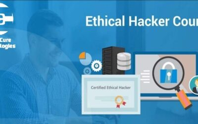 Ethical Hacking (College all years & working Professionals) (Live Online Classes)